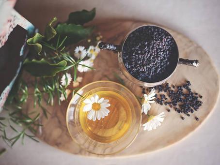My Herbal Education