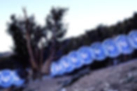 Bristlecone Hoop Dance, California_edited_edited.jpg