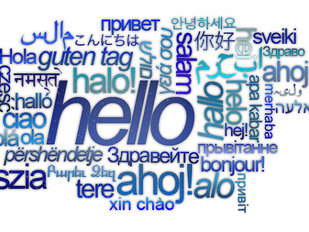 How many languages can you recognize? 20 new phone interpreting languages!