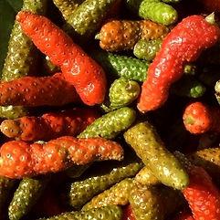 Ishigaki island pepper