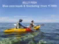 Jelly fish ishigaki kayak tour.JPG