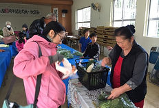 Yoshihara sunday market Ishigaki