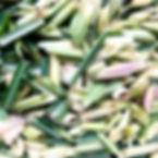 Lemongrass Ishigaki