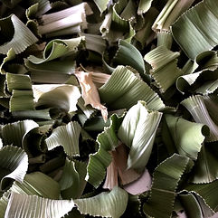 Pandanus - Pandan sun-dried leaves Ishigaki