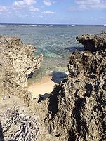 Hatoma island