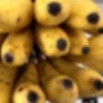 Ishigaki island bananas