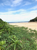 Crystal beach (Ishigaki island)
