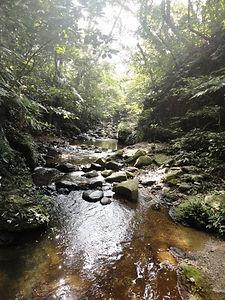 River Ishigaki island