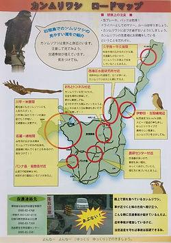 crested serpent eagle - kanmuri washi ro