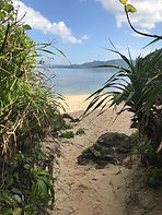 Yonehara coast (Ishigaki island)