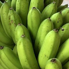 Ishigaki island green bananas