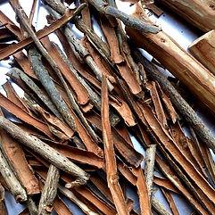 Cinnamon Ishigaki