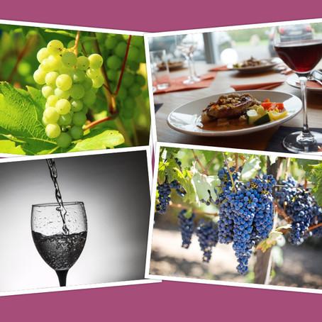 Sabes cómo elegir el vino para tu boda?