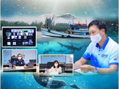 The Marine Department held a meeting to monitor rare marine animals and marine mammals