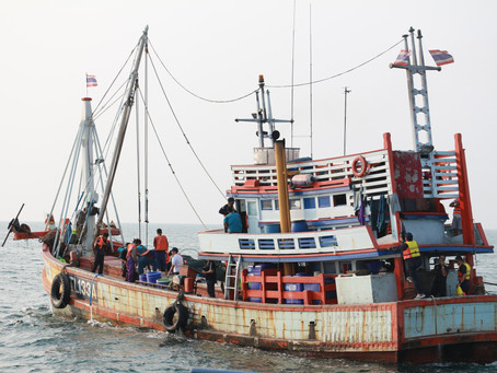 Confident! Thai fisheries are clean and free from IUU fisheries and human trafficking.