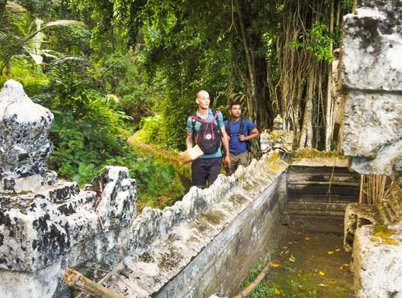 Bali-wild.jpg
