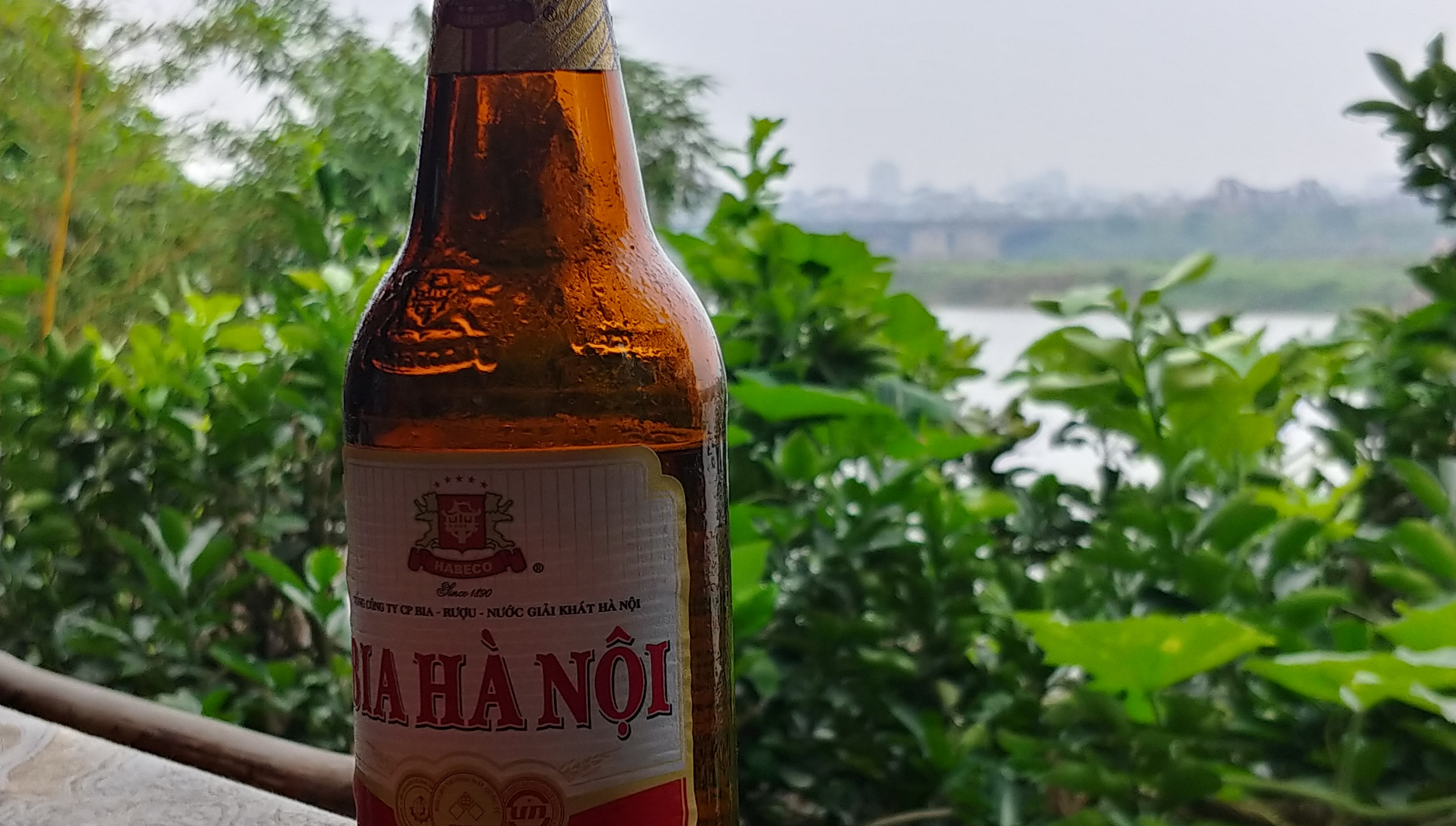 Bia Hanoi by the Red River; iconic!