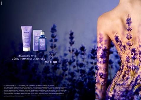 Beauty; Diego Alborghetti; English lavender; Flower; Labels; Lavender; Logos; Plant; Purple; Violet; Weleda