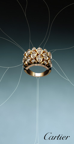 Cartier; Diego Alborghetti; Fashion accessory; Gemstone; Jewellery; Labels; Logos; Metal; Still life photography