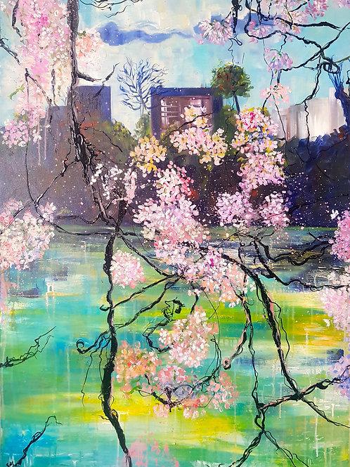 Vue de Cerisier