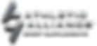AA-logo-Metal(wshad) (1).png