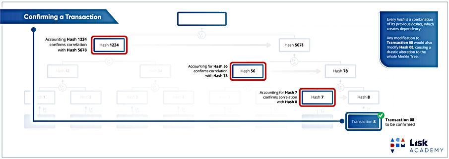 11c-merke-tree-highlighted.jpg