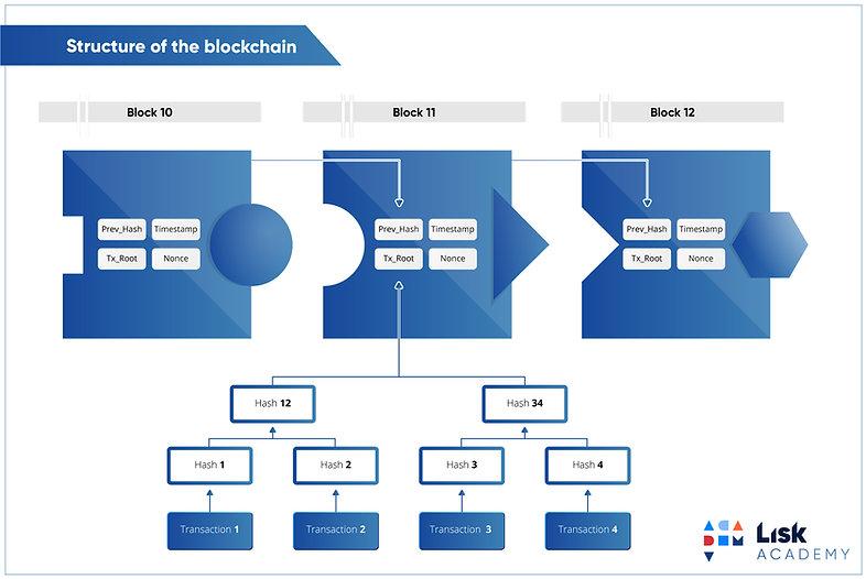15a-structure-of-blockchain.jpg