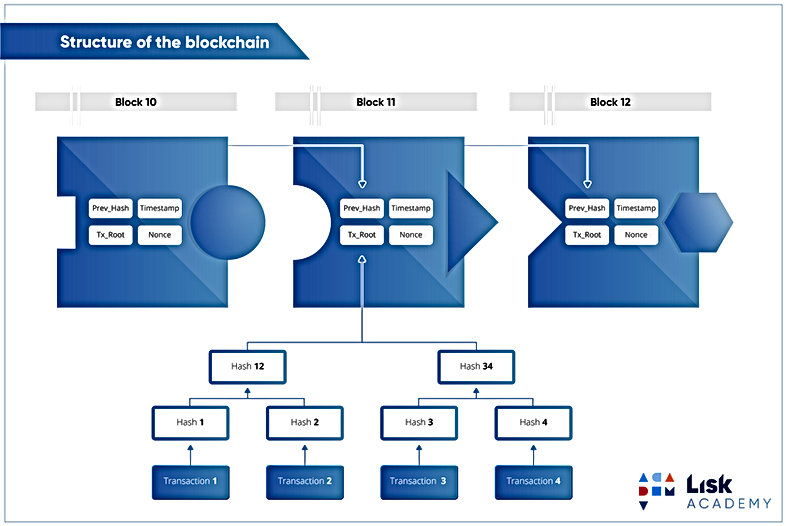 15a-structure-of-blockchain.jpg
