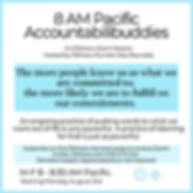 Accountabilibuddies (1).png