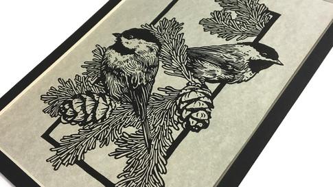 Birds A2.jpg