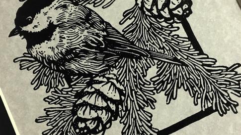 Birds A3.jpg