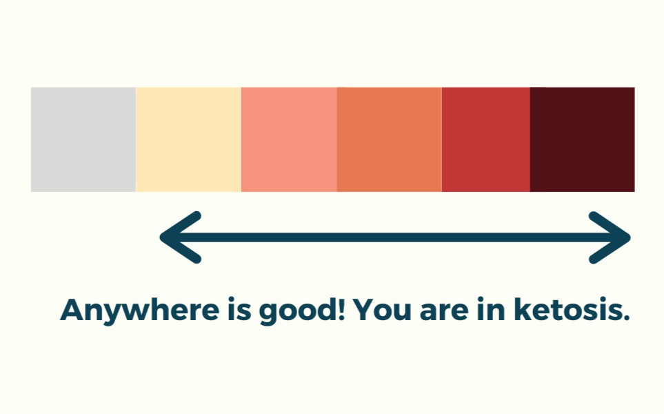 Ketone test strips are a common tool to find out whether you are in ketosis or not. Learn how they are used to support your keto lifestyle!