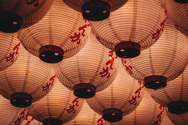 white-chinese-lantern-photography-226219