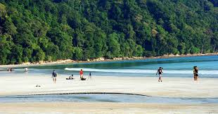 Andaman Radhanagar beach