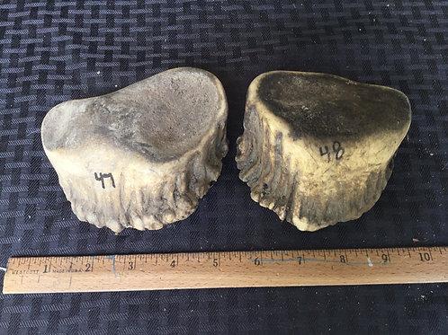Large burr $45. (One piece)