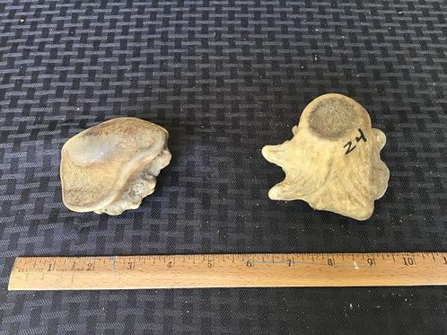Small burr $20 ( one piece)