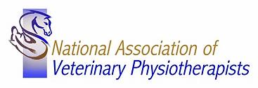 NAVP logo.png
