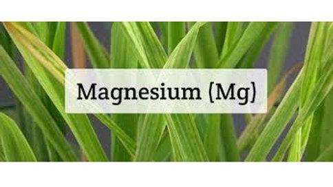 Magnesium Green&Blue