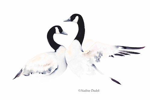 'Before the Dance' Limited Ed Giclee Print 3/40, unframed A2 (59 cm x 42 cm)