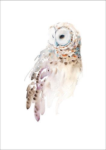 'Barred Owl' Limited Ed Giclee Print 6/40, unframed A2 (16 x 20 inch)