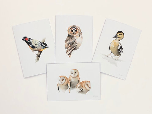 Greeting Cards 1 (pack of 4 cards and envelopes)
