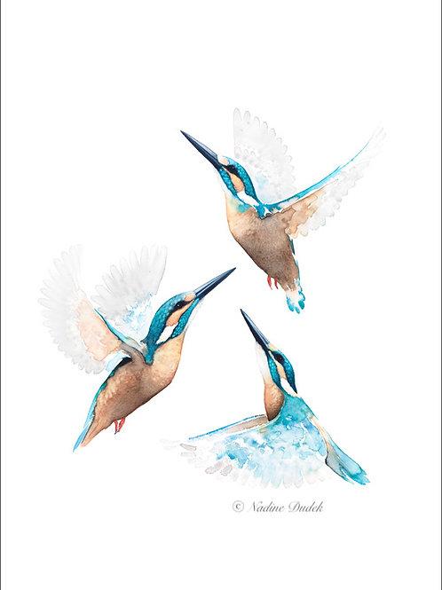 'All a Flutter' Ltd Ed Giclee Print 1/40, unframed A2 (42 cm x 59 cm)