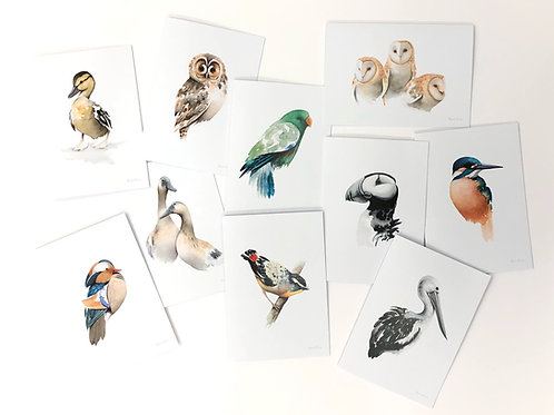 Greeting Cards 3 (pack of 10 cards and envelopes)