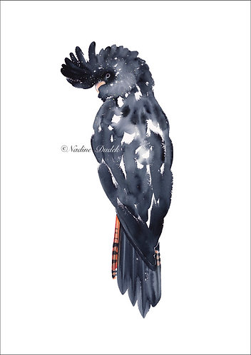 'The Bush King' Limited Ed Giclee Print 1/60, unframed A2 (42 cm x 59 cm)