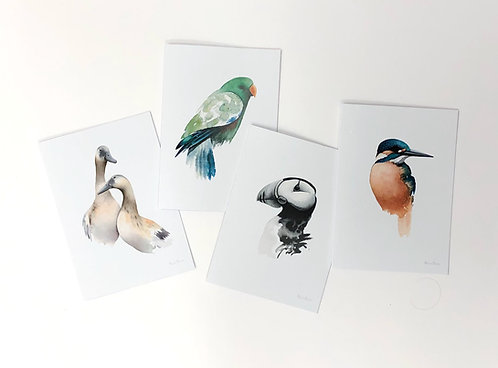 Greeting Cards 2 (pack of 4 cards and envelopes)