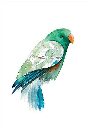 'Emerald' Ltd Ed Giclee Print 3/60, unframed A3 (29.5cm x 42cm)