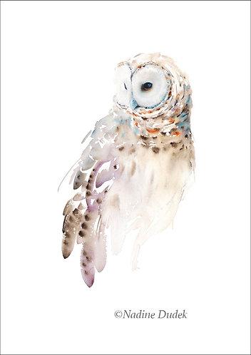 'Barred Owl' Limited Ed Giclee Print 16/40, unframed A2 (42 cm x 59 cm)