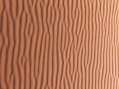 texture_sand3.jpg