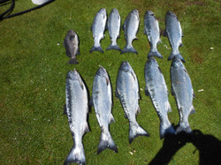 oct fishing 030