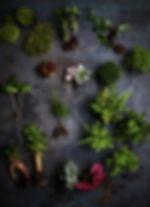 Végétales 01.jpg